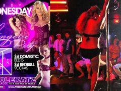 Models sue Polekatz Chicago strip club for using their photos in ads