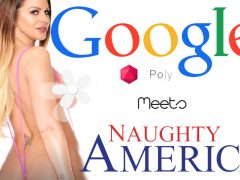 Naughty America is now on Google Poly